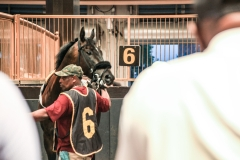 TRC-Night at the Races-244