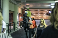 TRC-Night at the Races-247
